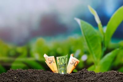 Geld en plantjes